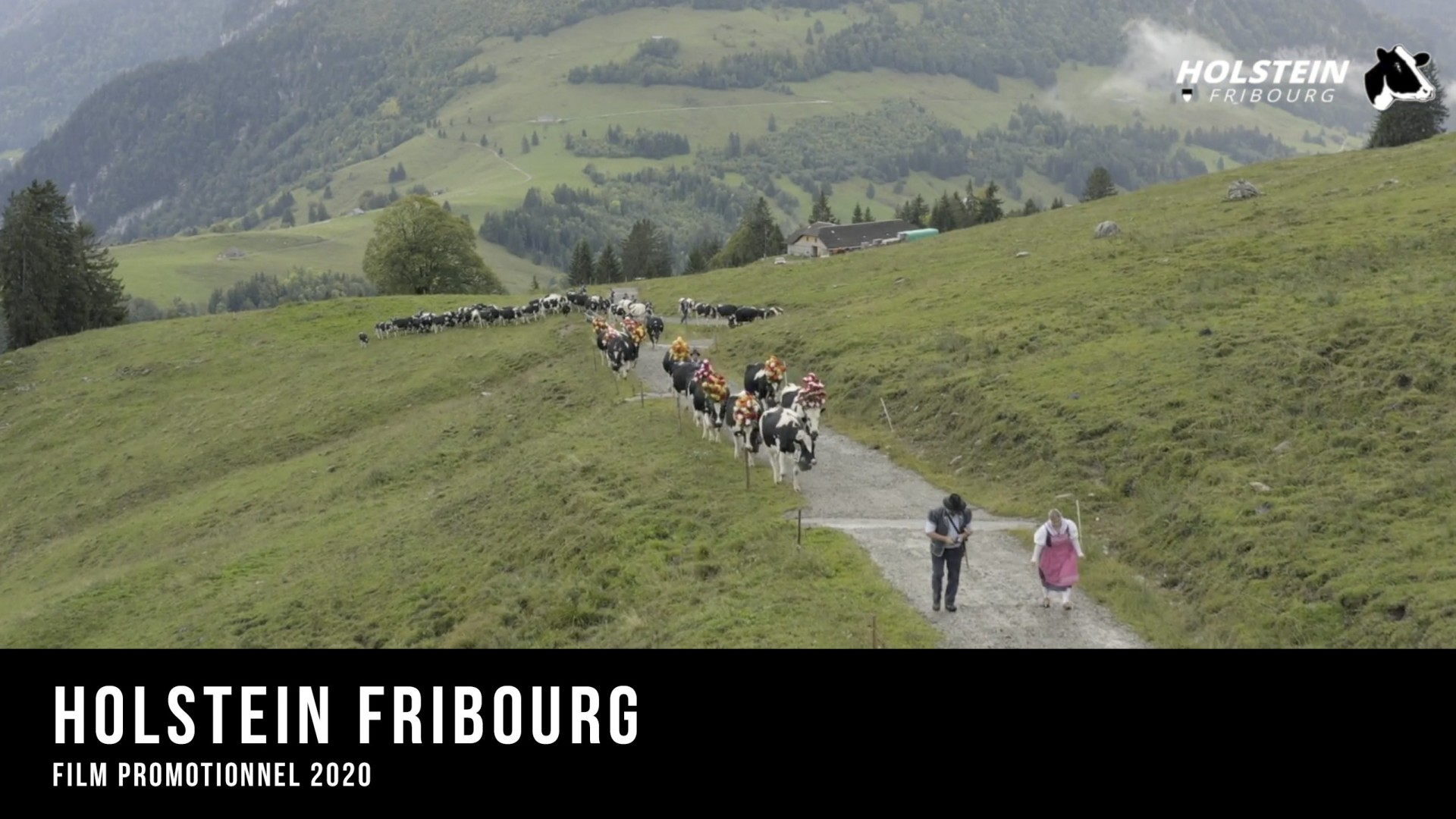 Holstein Fribourg, film promotionnel 2020